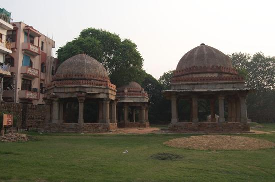Temple in the park Hauz Khas